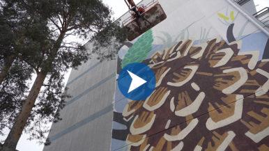 Männynkäpy loikkasi muraaliin – näin syntyivät Länsimäen seinämaalaukset