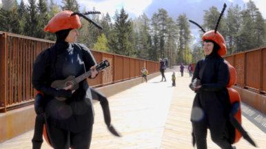 Sipoonkorven sillalta kajahtaa koppisten hyväksi